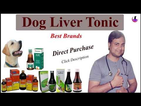 Dog Liver Tonic II When to give? II Best Brands II Hindi II dogandvet
