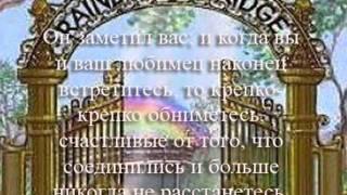 Мост Радуги  и наши любимцы_0001.wmv