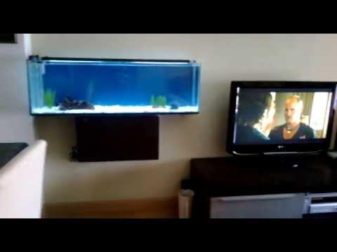 Acuario colgado de pared casero de 105 x 20 x 33 cm youtube - Pecera de pared ...