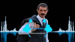 Download SEVDİĞİME SAY & NANE ŞEKERİM NANE  - ELMADAĞ`LI ADEM DEMİR MP3 song and Music Video