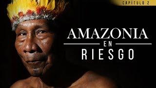 Amazonia en riesgo: 60 años sin desarrollo de los territorios indígenas | El Espectador