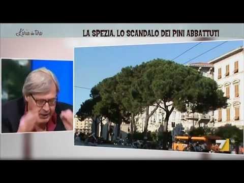 """Sgarbi: """"Questa è merda, TAR di deficienti! Il sindaco di La Spezia è il cancro di Renzi"""""""