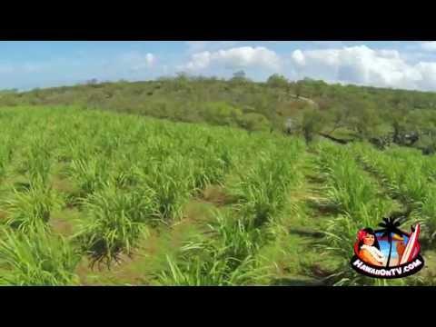 Organic Ocean Vodka Distillery - Kula Maui, Hawaii