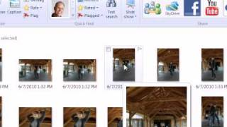 Organize images in Windows Live Photo Gallery 2011