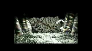 Harlequins Universe - 10 Jahre buntes Treiben - Filmdoku