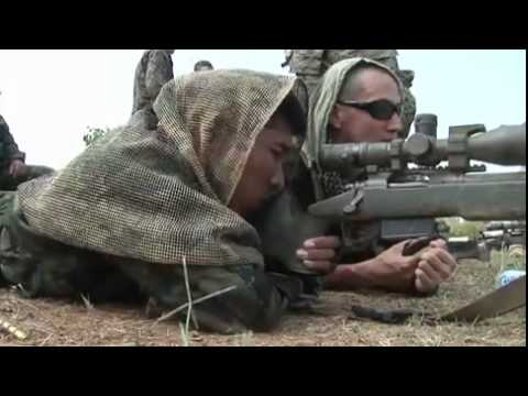 Scout Sniper Marines Train With Thai And Korean Special Forces - Marksmanship