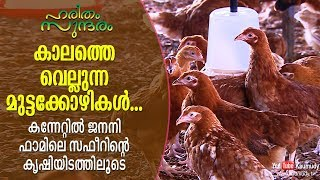 Profitable poultry farming | Walkthrough Janani farm @ Kannettil | Haritham Sundaram I EP 190