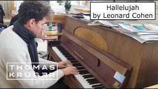 """THOMAS KRÜGER – """"Hallelujah"""" by Leonard Cohen (Wonderful Piano Version at Schloß Schönbrunn Vienna)"""