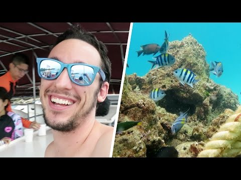 SCUBA DIVING ADVENTURES IN PHUKET