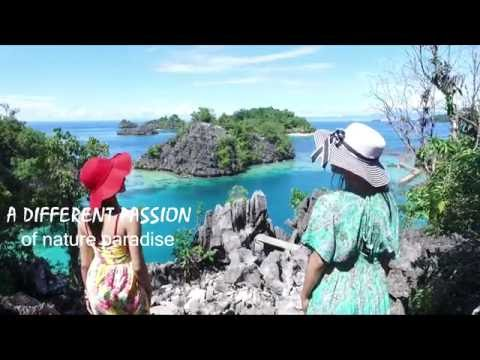 Labengki Island Natur Wonder Paradise Tourism Travel Tour Trip Holiday Vacation Guide Video