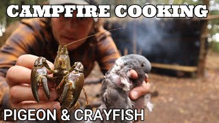 COOKING WILD FOOD AT THE BUSHCRAFT CAMP - PIGEON & CRAYFISH - SURF & TURF - WOODLAND CATCH & COOK