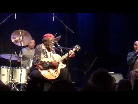 James Blood Ulmer - President Of Hell - Live in Vienna 2017