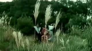 Caribou - Brahminy Kite