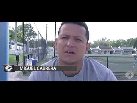 BOMMARITO 2017 MLB HIGHLIGHT VIDEO