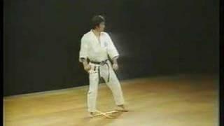 Heian Nidan Shotokan Karate