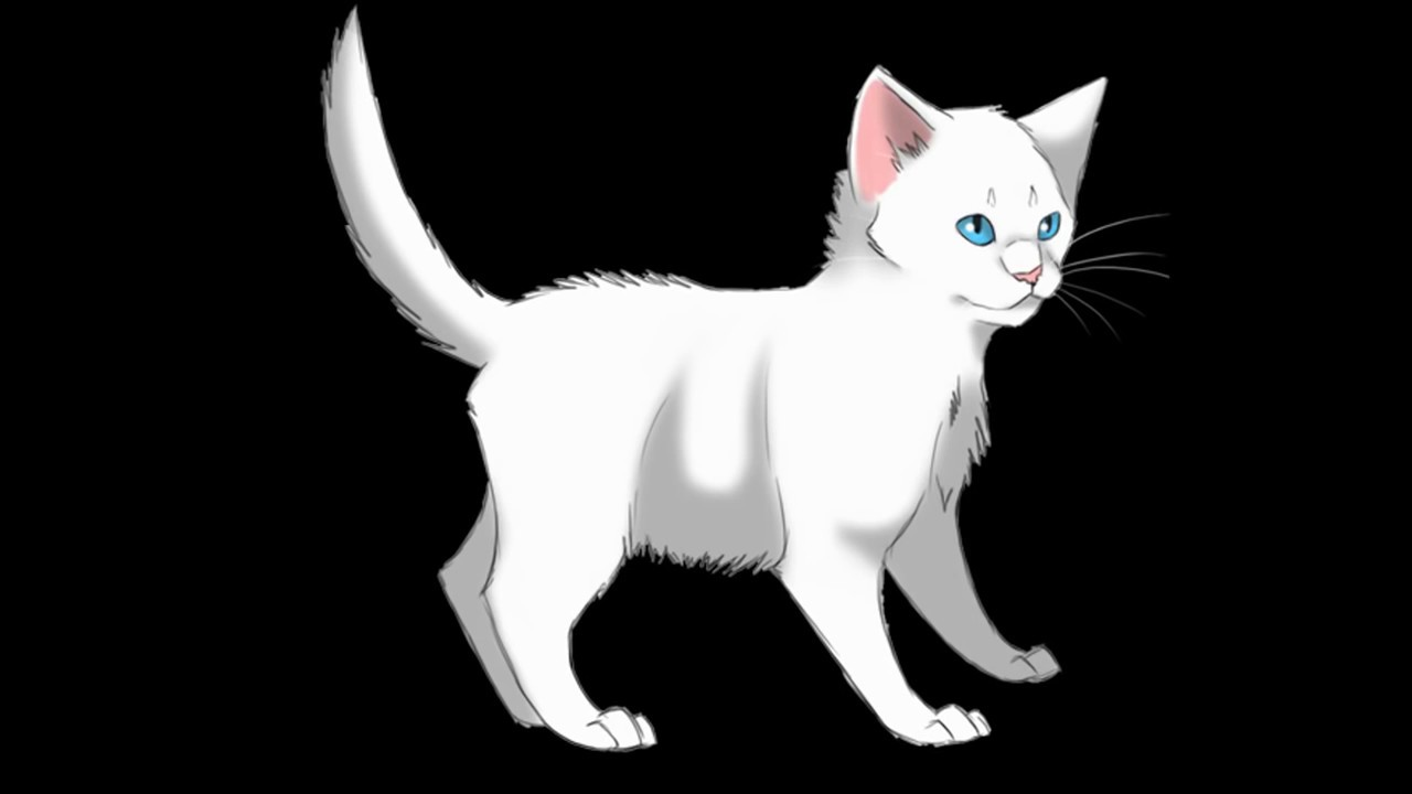 Warrior Cat Names For Grey And White Cats