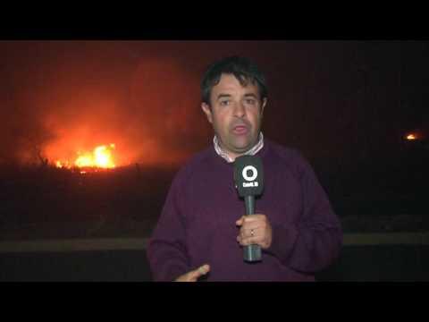 Los incendios ya afectaron 8.500 hectáreas
