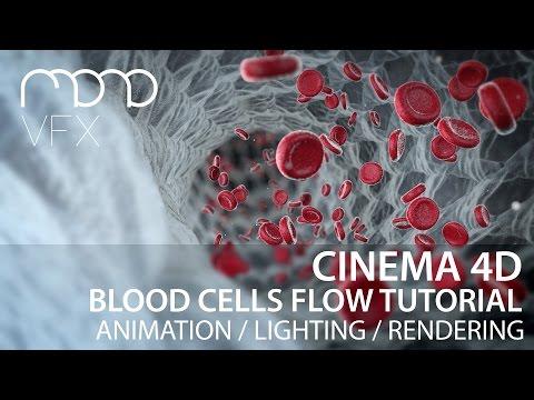 Cinema 4D - Blood cells flow tutorial part 2