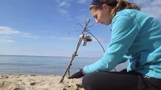 How to Make Seawater Drinkable