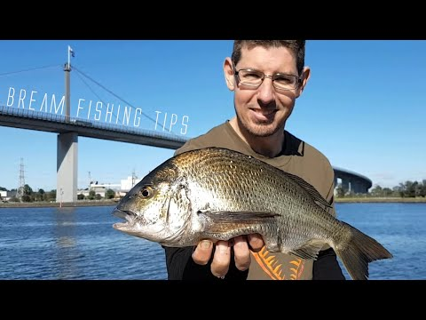 Bream Fishing Melbourne | Bream Fishing Tips For Beginners