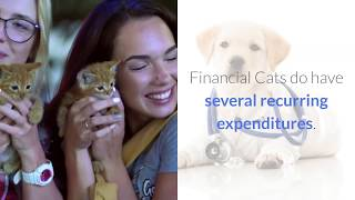 understanding caring for and training your cat  how to understand your cat better 2