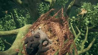 10 minutes of Ancestors: The Humankind Odyssey gameplay