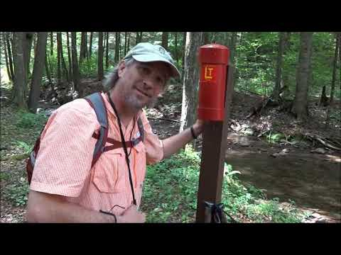 Loyalsock Trail, Loyalsock State Forest