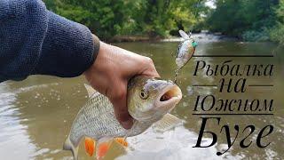 Рыбалка на реке Южный Буг.Ловля голавля, жереха, судака спиннингом.