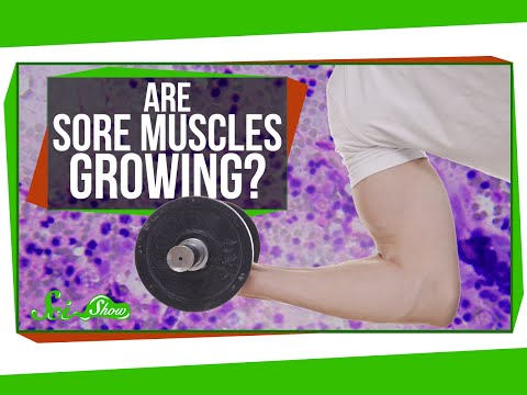 Are Sore Muscles Growing?