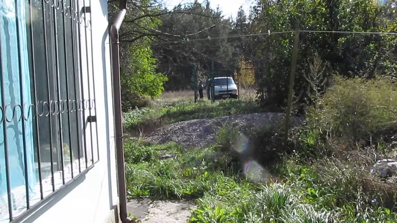 заслуженно пользуется черкасская обл село синица фото щенков хаски