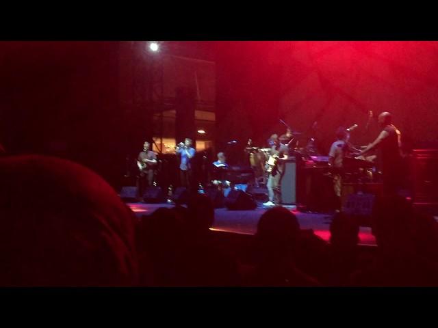 Snarky Puppy | Grown Folks | Auditorium Parco della Musica
