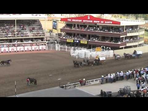 Calgary Stampede 2015 Chuck Wagon Racing
