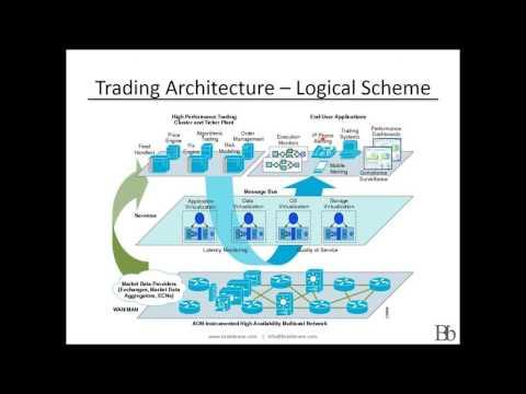 High frequency trading - Brain Brane