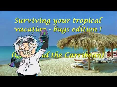 Vacation, Cuba, Caribbean. Bugs bites (chigoe, jejenes etc.), parasites. How to protect yourself.