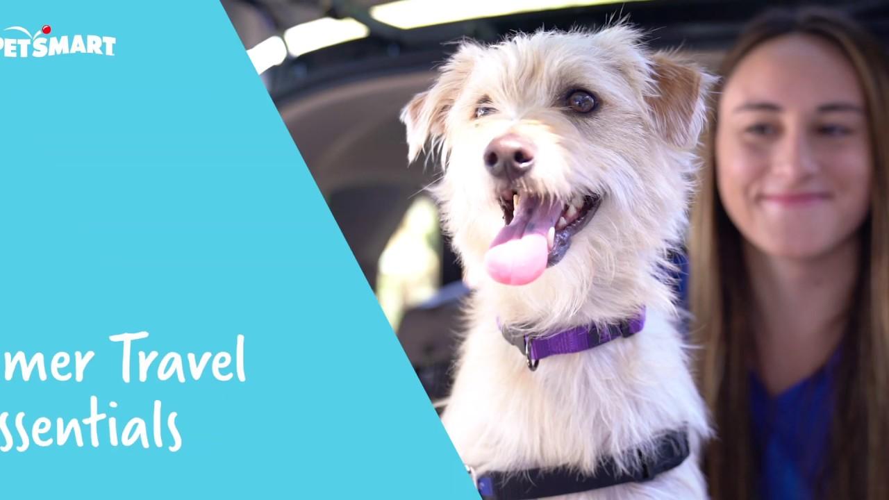 PetSmart Dog Groomer Reviews | Glassdoor