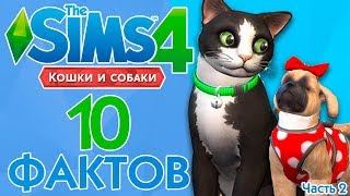 THE SIMS 4 КОШКИ И СОБАКИ - НОВЫЕ ФАКТЫ О ДОПОЛНЕНИИ!