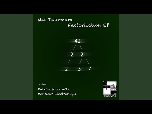 Factorization (Mathias Markovits Remix)