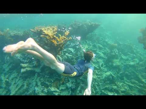 Cuba Holguin - Snorkeling along the coast
