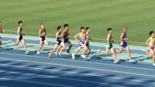 2016年度全中通信兵庫大会 男子3000m決勝