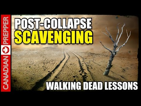 Post-Collapse Scavenging: Walking Dead Lessons