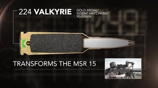 Introducing 224 Valkyrie (old Version)