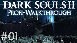 Dark Souls 2: Scholar of the First Sin – Profi Walkthrough