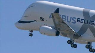 Le nouvel avion-cargo de la famille Airbus a décollé jeudi matin de...