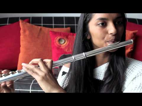 Roar - Katy Perry flute cover