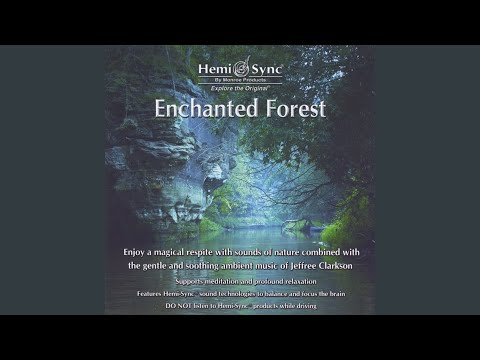 Enchanted Forest Skachat S 3gp Mp4 Mp3 Flv