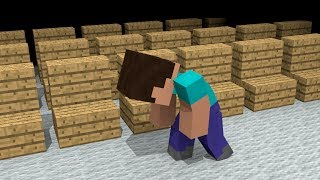 Steve Life Story - Minecraft Animation