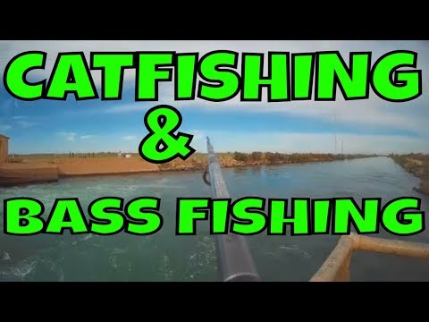 Catfishing | Bass Fishing | Highline Canal | Loyal Subscriber Test