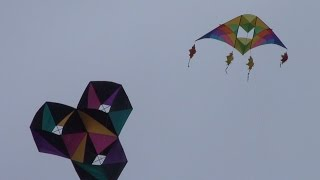 Kite Festival WSIKF 2014 Ascension 2 Thumbnail