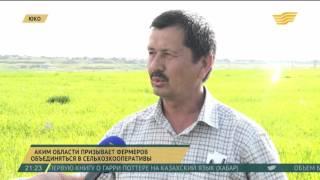 Аким ЮКО призывает фермеров объединяться в сельхозкооперативы(До конца этого года в ЮКО начнут работать сразу несколько видов электростанций, в том числе мини ГЭС, солнеч..., 2016-04-27T17:13:05.000Z)