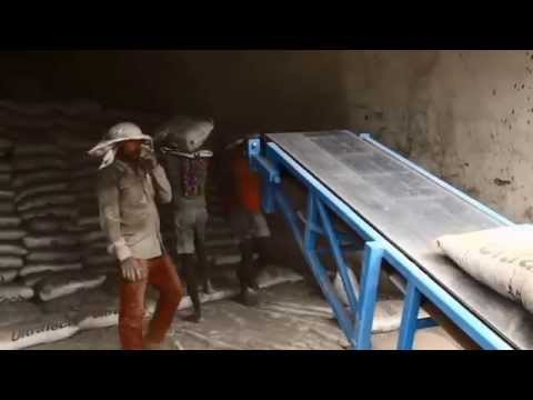 Cement Bag Handling - Comprehensive Study